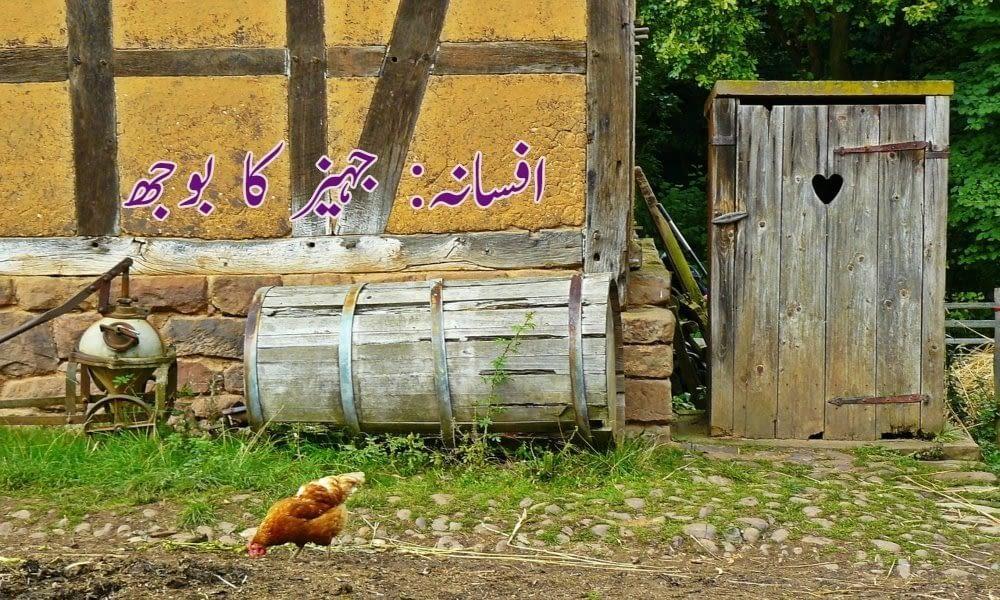village_life_pakistan_punjab_marriage_bride_urdu_content_article